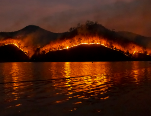 British Firefighters Tackle Wildfires in Greece – Strong Leadership in the Fire Service